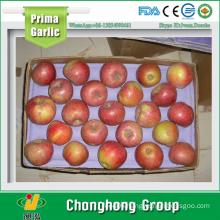 2015 New Jiguan Apple 20kg/carton