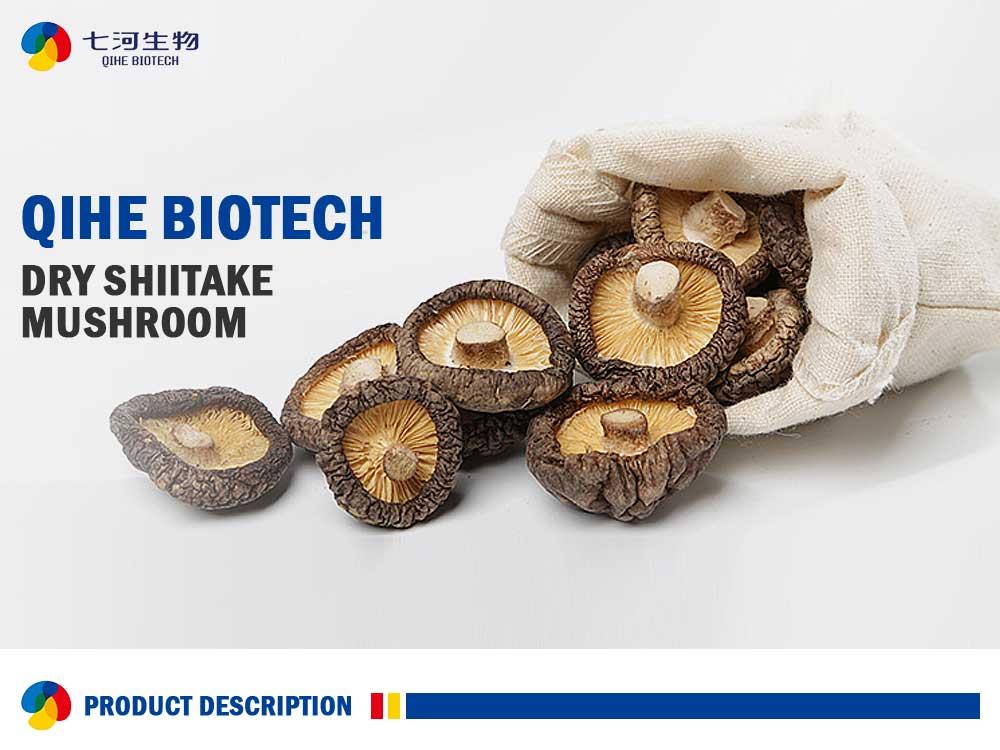 Dry Organic Shiitake Mushroom