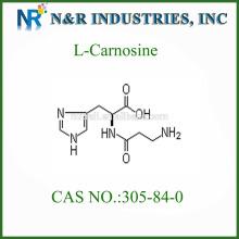 L Carnosine Powder 305-84-0