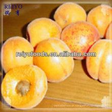 Pacotes de frutas congeladas