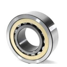 types of bearings cylindrical roller bearings NU 1010M