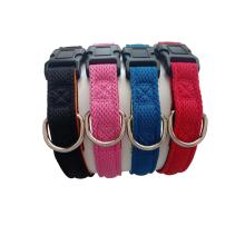 Hundehalsband mit individuellem Markenlabel und klassischem Muster