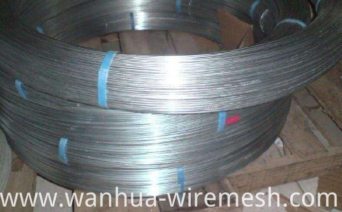 1.8mm2.0mm Oval Galvanized Steel Wire (1)