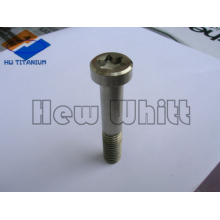 high end Ti6AI4V Titanium torx pan head screws