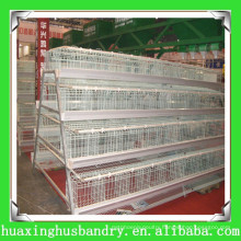 automatic battery cage laying hens for poultry farm