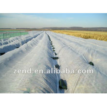 Hot Selling Recycled Polycarbonate Pellet Chinese Factory