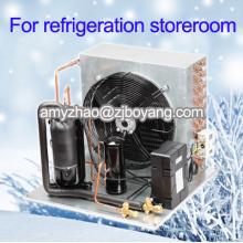 mini almacenamiento en frío para comida de supermercado con unidad condensadora de compresor 3HP