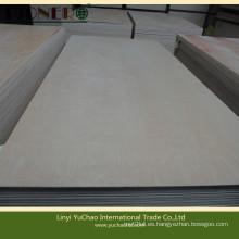 Carb Fsc Certificado de madera contrachapada de abedul blanco para muebles