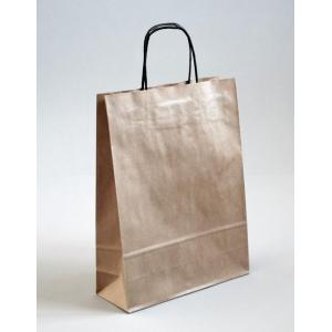 Brown kraft paper bag recycled