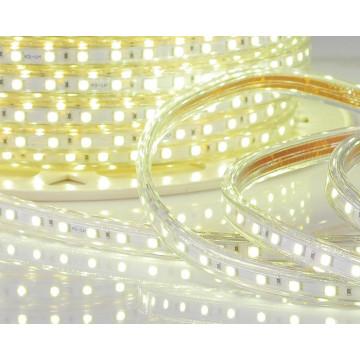 Garden Decoration AC110V LED Strip Light LED
