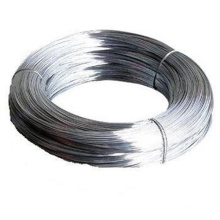 Profession Manufacturer Produce Electro Galvanized Iron Wire