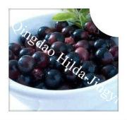 Acai Berry Extract Anthocyanidins