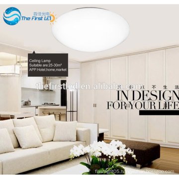 Surface Mounted Ceiling Lamp. LED Modern Ceiling Light