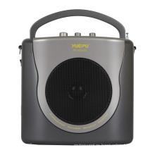 Amplificador portátil con eco, USB, SD y micrófono inalámbrico de mano