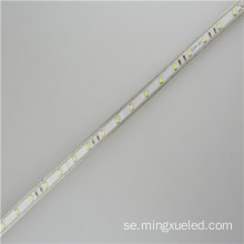 AC110V LED tejp ljus 100m Per rulle 5050 Led Strip 220v