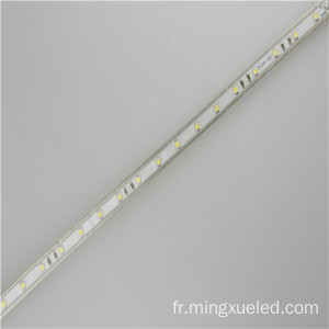 Ruban LED AC110V light 100m / Roll 5050 Led Strip 220v