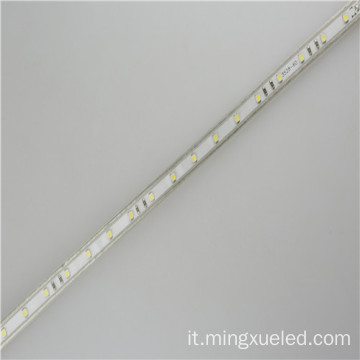 AC110V LED nastro luce 100m Per rullo striscia 5050 Led 220v