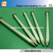 Tianjin Manufacturer Galvanized Square Boat Nails