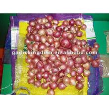 Экспорт лук-шалот из китая