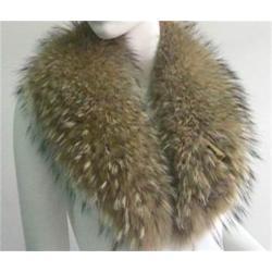 Chinese Raccoon skin Collar.