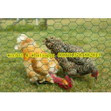 Grille métallique hexagonal de prix inférieur (Chiken Nettting)