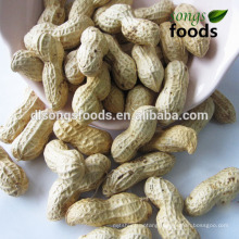 All types of indian peanut