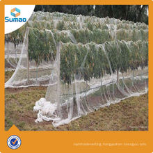 Hot sale plastic HDPE transparent apple tree anti hail protection net