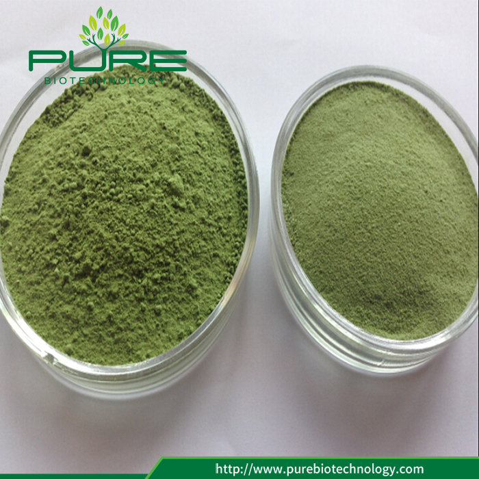 Instant Wheatgrass Juice Powder Good Water Soluble (2)