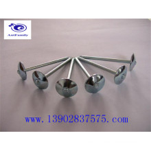 Umbrella head roofing nails manufacturer