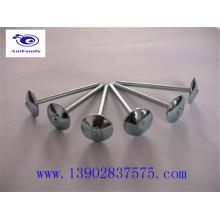 Fabricante de pregos de telhado de cabeça de guarda-chuva