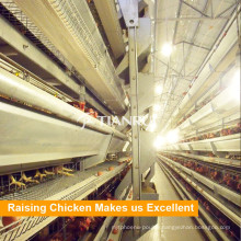 Tianrui Design Galvanized Wire Mesh A Frame H Frame Chicken Cage
