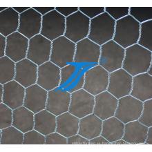 Malla de alambre hexagonal galvanizada precio bajo de alta calidad