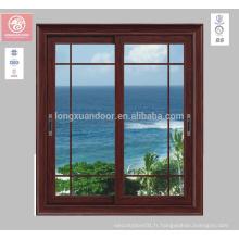 Vitres tempérées en verre Fenêtres en acier inoxydable en acier fabriquées en Chine