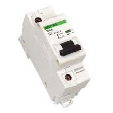 Dz47-100 (NC100H) Mini Disjuntor MCB