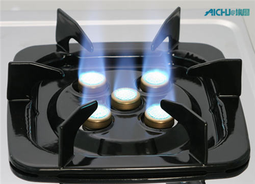 Double Ring and Turbo Burner Gas Stove