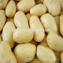 Preis für Frühkartoffeln aus China