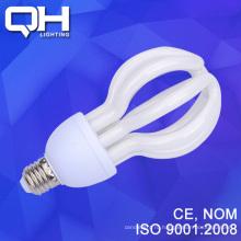 Энергосберегающие DSC_7911