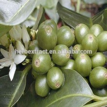 Sell green coffee bean extract capsules