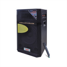 "12"" Active Professional Speaker 610t"