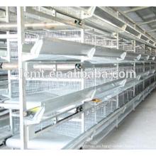 alambre de acero con poco carbono galvanizado Material jaula de pollo para aves de corral