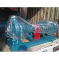 Bomba centrífuga de óleo quente arrefecida a ar série RY