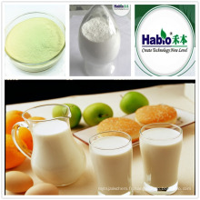 Enzyme lactase poudre pour l'alimentation (lipase, galcatosidase)