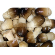 Mushroom Canned Whole Peeled Straw Mushrooms