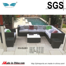 High Quality Modern Design PE Rattan Sofa Set Furniture (ES-OL001)