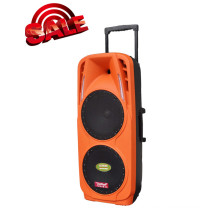 "Doble altavoz 10 ""Altavoz inalámbrico Bluetooth Protabel F73"