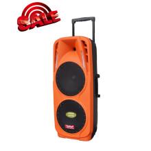 Altavoz de batería recargable con USB / SD Micrófonos inalámbricos Bluetooth (F73)
