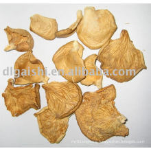 dried oyster