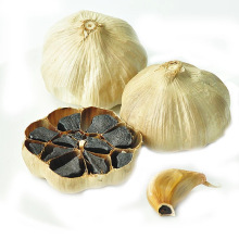 Chinese fermented black garlic extract price
