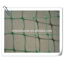 vegetable farming cucumber net