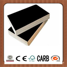 Construction Plywood Concrete Plywood